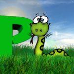 pythonをはじめよう!(1)最初に覚えること